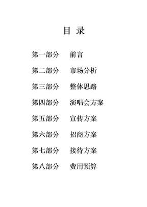 明星演唱会推广方案.docx
