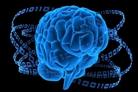 大脑如何思维.pdf