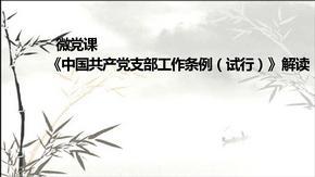 党支部工作条例解读ppt.ppt