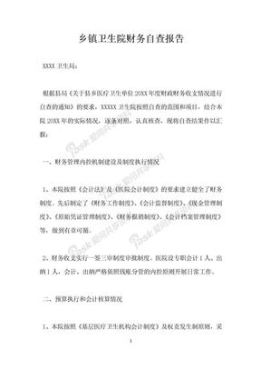 乡镇卫生院财务自查报告.docx