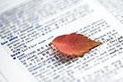 考研英语语法十天速成超详细笔记.…