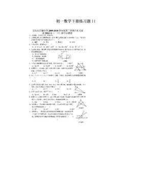 初一数学下册练习题11.doc