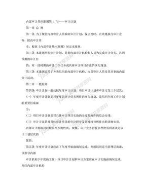 中国内部审计准则.doc