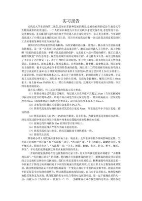道路桥梁专业暑期实习报告.doc