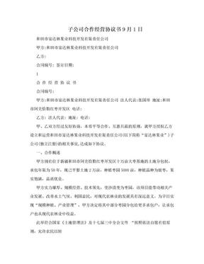 子公司合作经营协议书9月1日.doc