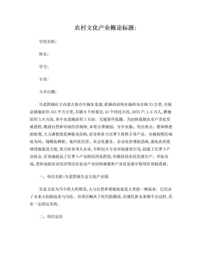 农村文化产业项目管理方案.doc