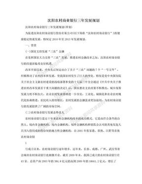 沈阳农村商业银行三年发展规划.doc
