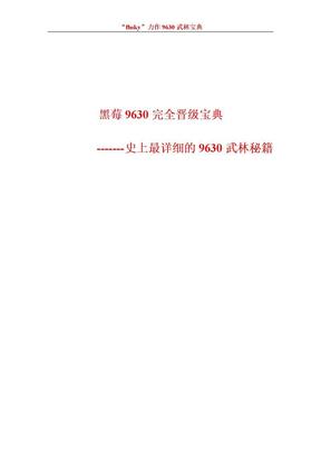 黑莓9630史上最详细武林秘籍.doc