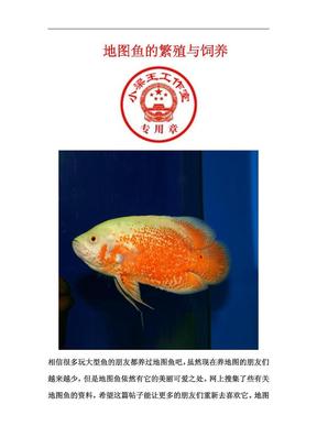 地图鱼的繁殖与饲养.pdf