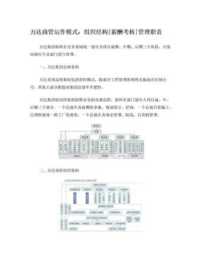 万达商业管理模式.doc