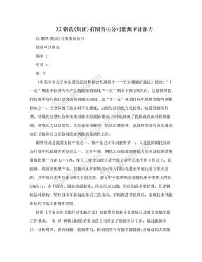 XX钢铁(集团)有限责任公司能源审计报告.doc