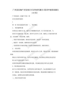 广西某房地产开发项目可行性研究报告(优秀甲级资质报告110页).doc