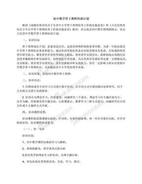 初中数学骨干教师培训计划.docx