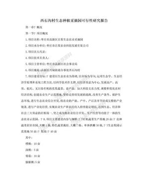 西石沟村生态种植采摘园可行性研究报告.doc