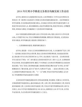 2014年红明小学推进义务教育均衡发展工作总结.doc