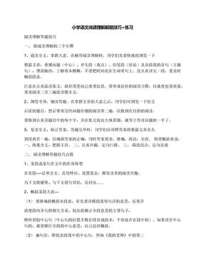 小学语文阅读理解解题技巧+练习.docx