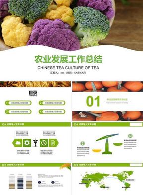 农业发展工作总结ppt.pptx