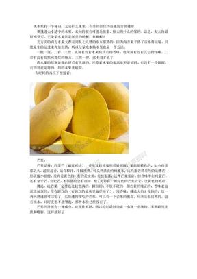 选水果秘笈.doc