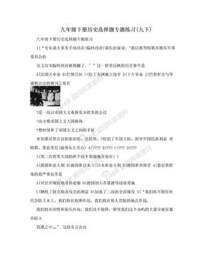 九年级下册历史选择题专题练习(九下).doc