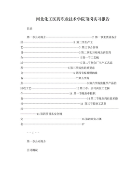 夏晓雷沧州中铁顶岗实习报告.doc