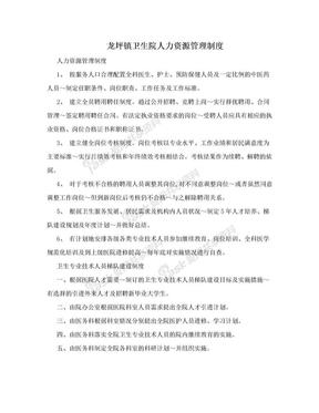 龙坪镇卫生院人力资源管理制度.doc
