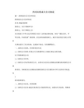 共同出资成立公司协议.doc