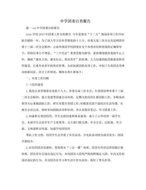 中学团委自查报告.doc