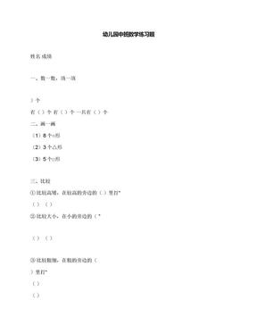幼儿园中班数学练习题.docx