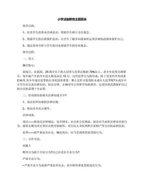 小学法制教育主题班会.docx