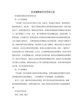 青龙城物业经营管理方案.doc