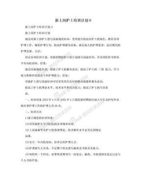 新上岗护士培训计划0.doc