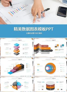 精美数据图表模板PPT.pptx