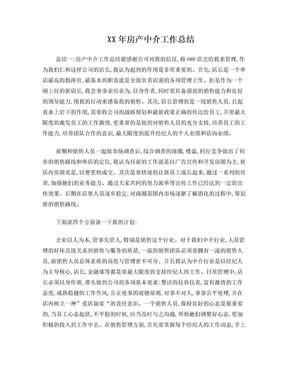 XX年房产中介工作总结.doc