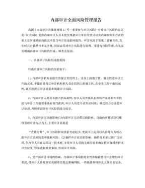 内部审计全面风险管理报告.doc