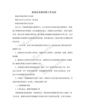 街道办事处环保工作总结.doc