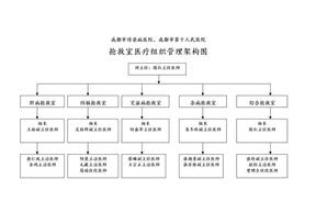 ICU护理组织管理架构图2011-11-21.doc