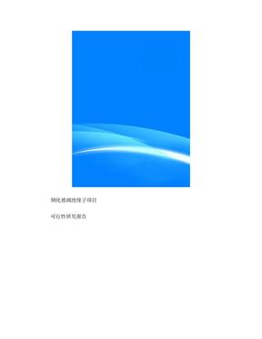 钢化玻璃绝缘子项目可行性研究报告(目录).doc