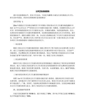 公共卫生自查报告.docx