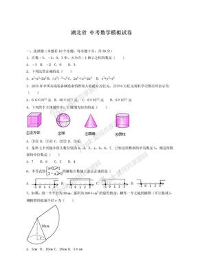 2019年最新湖北省中考数学模拟试卷及答案解析一.doc