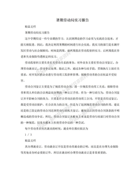 暑期劳动局实习报告.doc