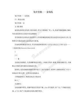 龟中贵族——金钱龟.doc