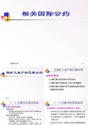 09-相关国际公约.ppt