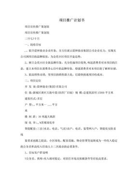 项目推广计划书.doc