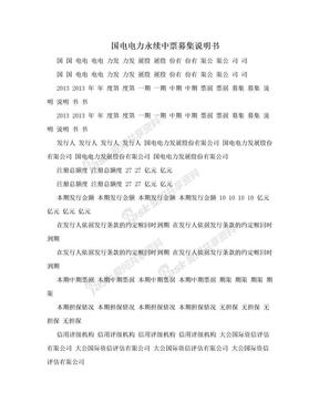 国电电力永续中票募集说明书.doc