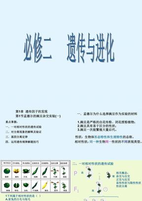 高中生物必修2全册总复习课件.ppt