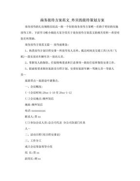 商务接待方案范文_外宾的接待策划方案.doc