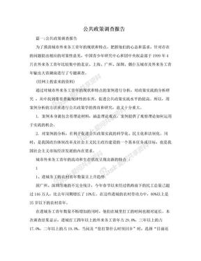 公共政策调查报告.doc