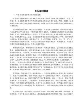 中小企业财务制度.docx
