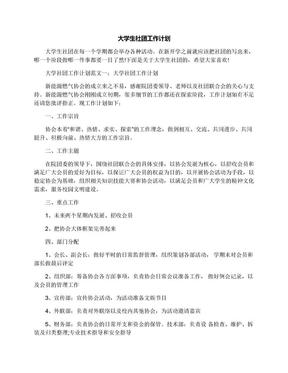 大学生社团工作计划.docx