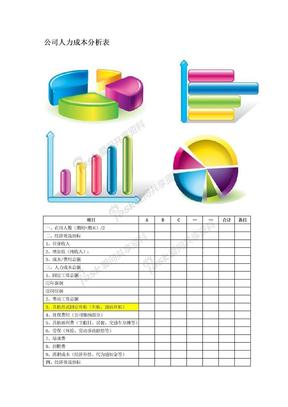 公司人力成本分析表.docx
